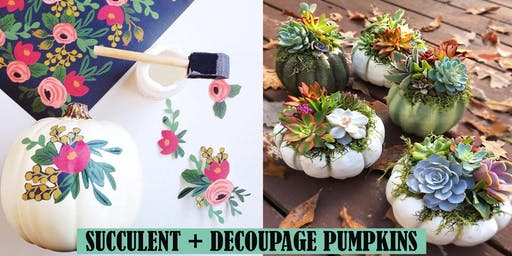 Succulent Decoupage Cinderella Pumpkin Workshop
