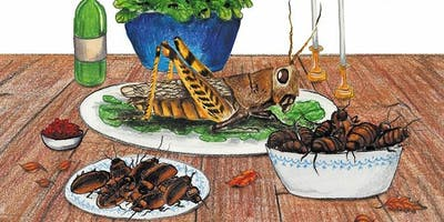 The Basics of Bug Cooking