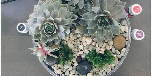 Succulent Planting Class 9-24-19