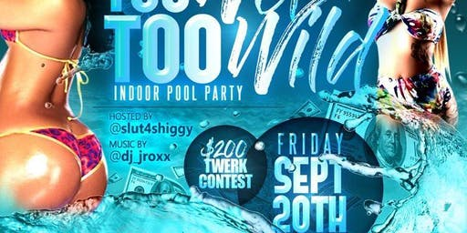 Too Wet Too Wild Indoor Pool Party