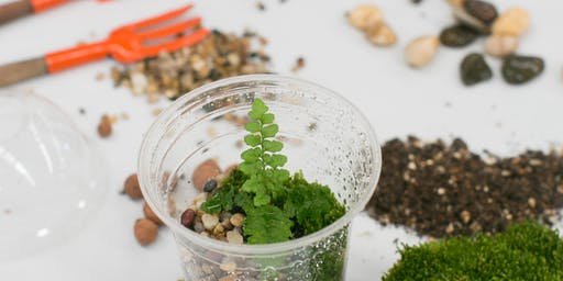 KiDS Terrarium Workshop