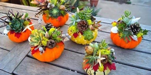 Succulent Diffuser Make & Take Event