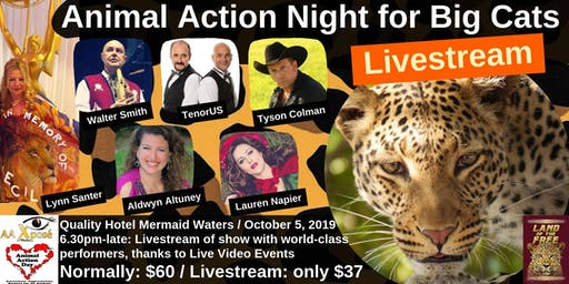 Animal Action Night for Big Cats- LIVESTREAM