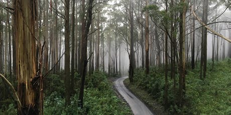 Victoria's Regional Forest Agreements: The Contribution of Forests to Global Carbon Cycles tickets