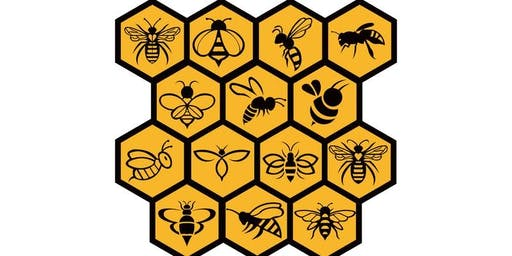 2 Day Beekeeping Hands on Course - Now that you're ready to get started (returning By Popular demand)