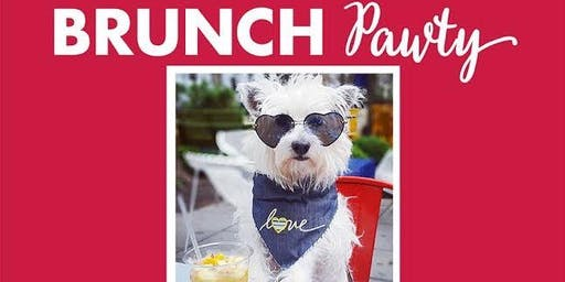 BarkHappy Sacramento: Brunch Pawty Benefiting Chako Pitbull Rescue and Advocacy!