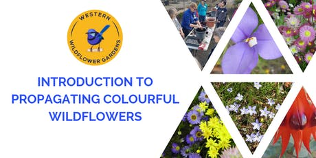 Introduction to Propagating Colourful Wildflowers tickets