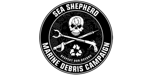 Beach Clean, with Caroline Armstrong from Sea Shepherd