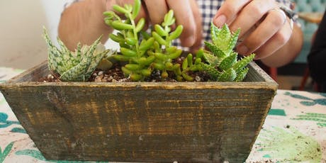 BRING your OWN Container   Succulent Workshop  tickets