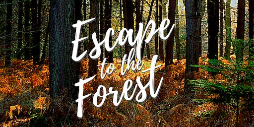Escape to the Forest: Plant-Powered Running Retreat