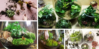 Tipsy Terrarium Workshop