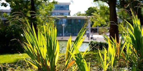 UCD Proposal Clinics for IRC Postgraduate Applicants 2020 tickets