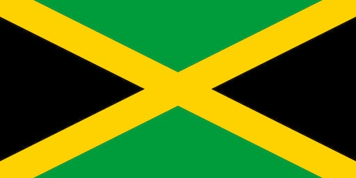 Dawn Butler MP's Jamaica Party