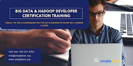 Big Data and Hadoop Developer Certification Training in  Moosonee, ON tickets