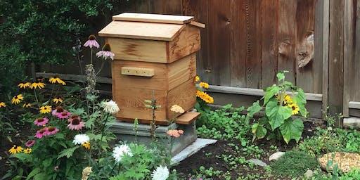 Urban Beekeeping 101 - Getting Started!