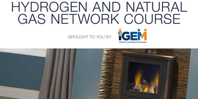 Hydrogen and Natural Gas Network Course by IGEM