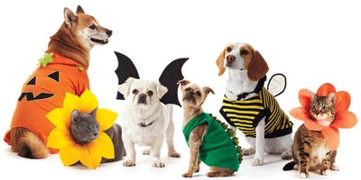 2nd Annual Pet Parade & Costume Contest for Dogs, Cats & Birds