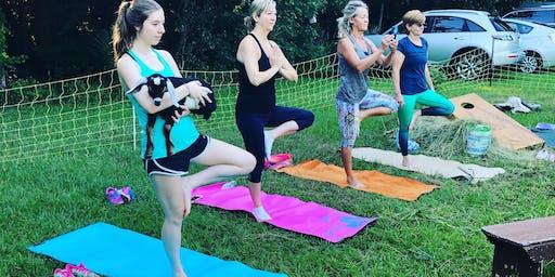 She CLIMBS Goat Yoga Class