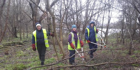 Practical workday at Walthamstow Wetlands, Saturday 28th Sept 2019 with London Wildlife Trust tickets