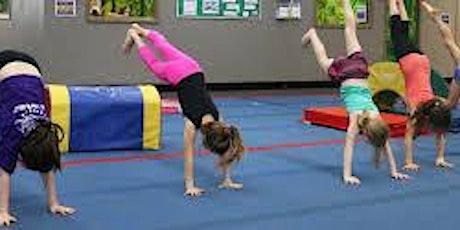 School's Out Program - Dakota Star Gymnastics tickets