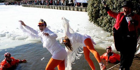 WinterFest Polar Bear Plunge at Chetola Lake tickets