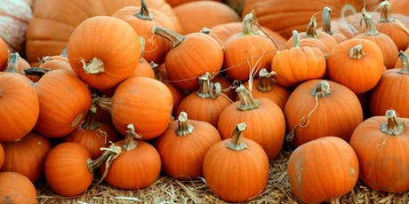 Rockledge UMC Pumpkin Patch 2019 tickets