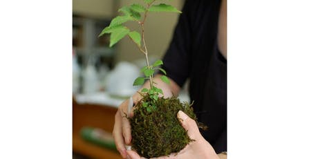 Pints and Plants: Kokedama Workshop  tickets