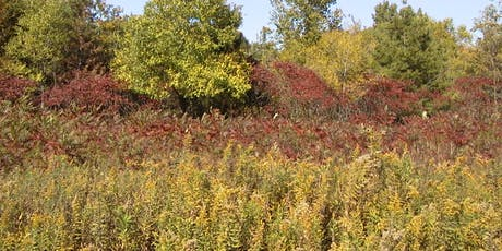 Fall Seed Collection Workshop tickets