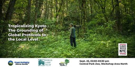 Tropicalizing Kyoto - The Grounding of Global Protocols to the Local Level