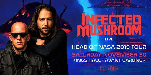 Infected Mushroom (Live)