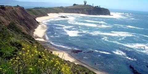 Take A Hike: Fitzgerald Marine Reserve