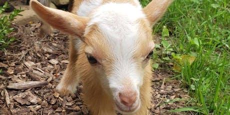 Fun Farm Night w/Baby Goat Yoga, Bottle Feeding, & Fire tickets