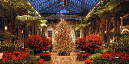 DAY TRIP: HOLIDAY LIGHTS AT LONGWOOD
