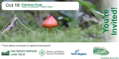 Fabulous Fungi tickets