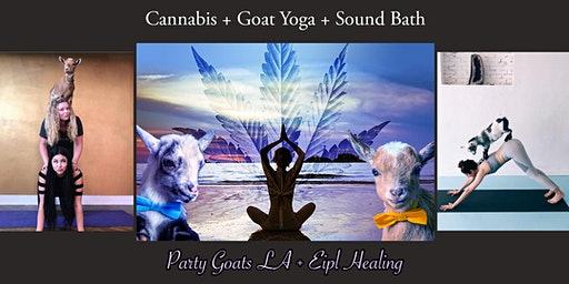 Ultimate Goat Yoga + Sound Bath Experience - Infused with Cannabliss
