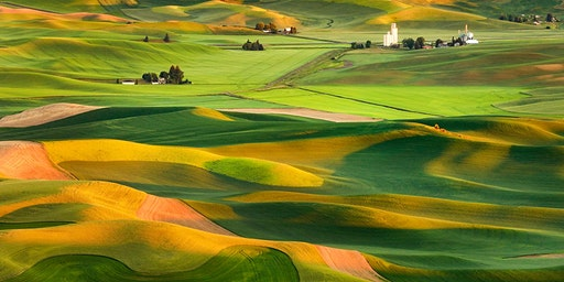 Life In The Palouse Nature Photography Workshop Hosted by Aaron Reed