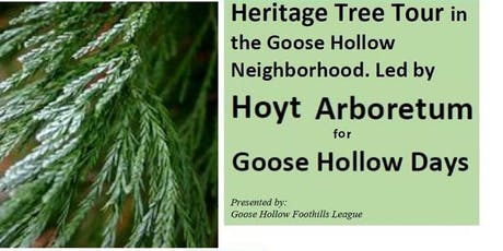Heritage Tree Tour of Goose Hollow tickets