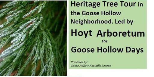 Heritage Tree Tour of Goose Hollow