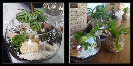 Terrarium Workshop with Rock Leaf Moss @ City Hall tickets