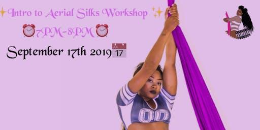 Intro to Aerial Silk Workshop!