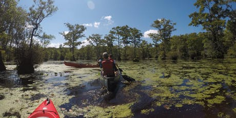 Paddle at Merchants Millpond State Park tickets
