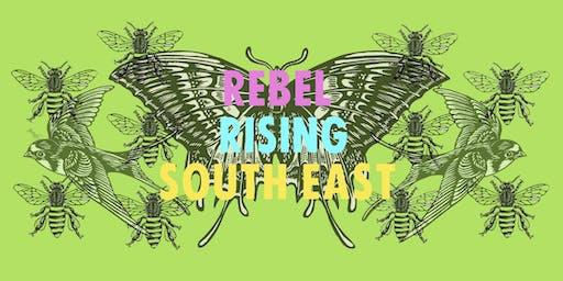 Day 2; Rebel Rising South East (A Regional Extinction Rebellion Gathering)