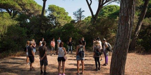Biophilia Wellness Nature Therapy Walk
