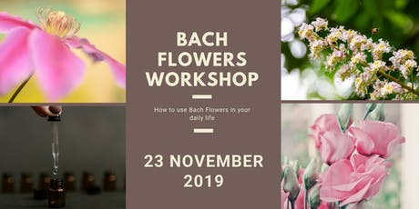 Bach Flowers Workshop tickets