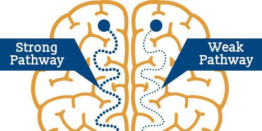 Change your mind, change your life: Understanding Neuroplasticity