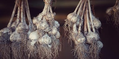 Grow Your Own Produce Series: Garlic, Cover Crops, and Compost