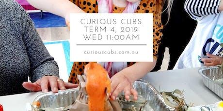 Curious Cubs Term 4 - Wed 11:00am (5 wks) tickets