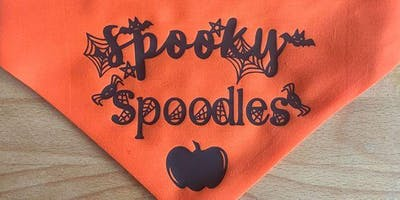 Spooky Spoodles Play Date