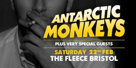 Antarctic Monkeys tickets