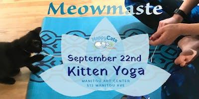 Kitten Yoga September Session